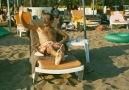 Plajda kız tavlama sanatı  xD Ersin Korkut [HQ]