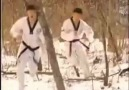 Taekwondo Speed
