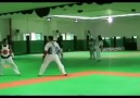 Taekwondo trainer