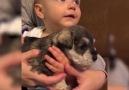 Akıllı Tv Resmi Sayfası - Minik Bebeklerin Minik Dostları