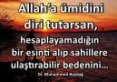 Allaha ümidini diri tutarsan... - Dr. Muhammed Bozdağ