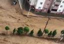 Deniz Varlı - Bu doğal afet değil insan eliyle yapılan...