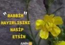 Dini Esaslar - Amin