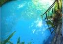 Earth Wonders - Fervedouro Buriti - Brazil