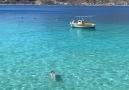 Greeks Worldwide - Beautiful Limeni in Mani Greece !!
