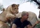 Mynet - Vahşi hayvanlarla arasında inanılmaz bir ilişki olan adam Dean Schneider