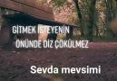 SEVDA mevsimi - Aynenn