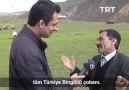 TRT Arşiv - Bingöllü Çoban