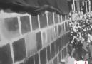 UMRE TV - 1960 Haccindan