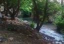 Vakkas Çınar - Besni su gözü